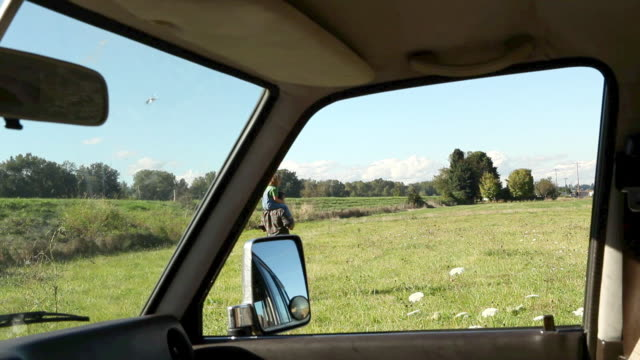 Father carrying young son on shoulders in a field, viewed from inside a car