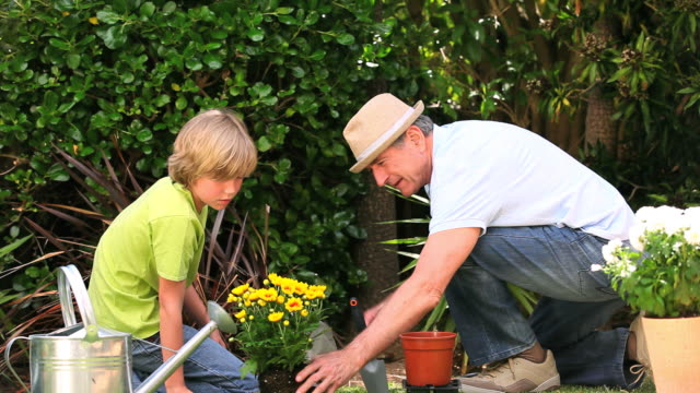 vídeos de stock e filmes b-roll de father gardening with his son / cape town, western cape, south africa - genderblend