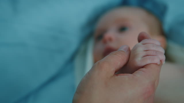 father holding hand of newborn in hospital - baby stock videos & royalty-free footage