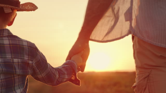slo mo father holds his son's hand as they walk across the field at sunset - holding hands stock videos & royalty-free footage