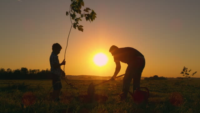 ds father planting a tree with his son - volunteer stock videos & royalty-free footage