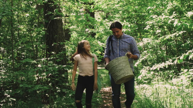 father pointing while daughter collecting garbage in forest during summer - sweden stock videos & royalty-free footage