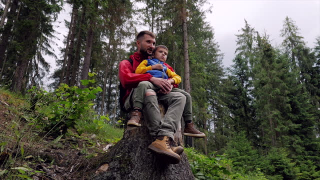 father showing smth for son while sitting on a tree stump - recreational pursuit stock videos & royalty-free footage