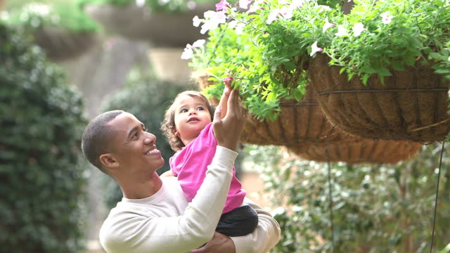 father shows little girl where flower came from - toddler stock videos & royalty-free footage