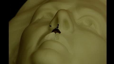vídeos y material grabado en eventos de stock de fathers4justice man arrested after vandalising queen portrait; t040702002 / tx guildhall art gallery: severed head of thatcher statue with chipped... - torso