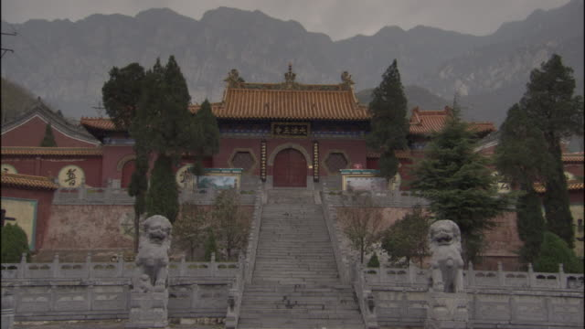 ws fawang shaolin temple and steps/ henan province, china - imperial lion stock videos and b-roll footage