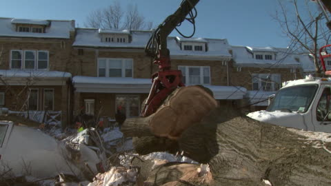 february 11, 2010 crane clearing fallen trees in residential area after blizzard / washington, d.c., united states - baumstumpf stock-videos und b-roll-filmmaterial