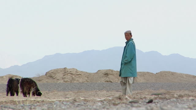February 2009 WS Herder with herd of goats / Bakwa Farah Province Afghanistan