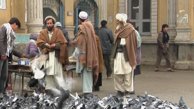 february 2009 men and women feeding flock of pigeons / kabul, afghanistan - kabul stock-videos und b-roll-filmmaterial