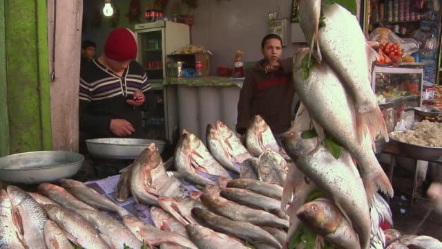 vidéos et rushes de february 2009 people in fish market / kabul, afghanistan - opération enduring freedom
