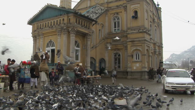 february 2009 ws view of shrine with flock of pigeons / kabul afghanistan - kabul stock videos and b-roll footage