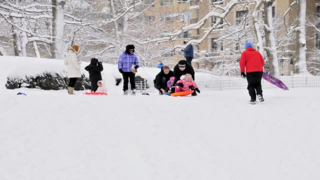 vídeos de stock e filmes b-roll de february 2013 winter storm, central park, new york city, manhattan, usa children sledding in central park, winter storm on february 09, 2013 in new... - 2013