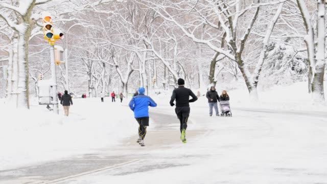 february 2013 winter storm, central park, new york city, manhattan, usa february 2013 winter storm, central park, nyc on february 09, 2013 in new... - 2013 stock videos & royalty-free footage