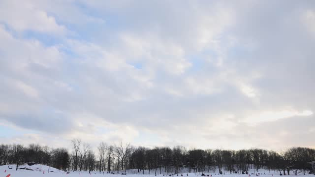 february canadian winter sky over forest park - bare tree stock videos & royalty-free footage