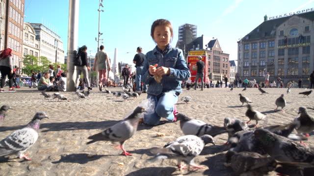 feeding birds - top garment stock videos and b-roll footage