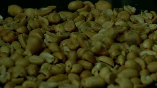 Feeding children peanuts may avoid allergies in later life ENGLAND INT Peanuts dropping onto surface PAN peanuts
