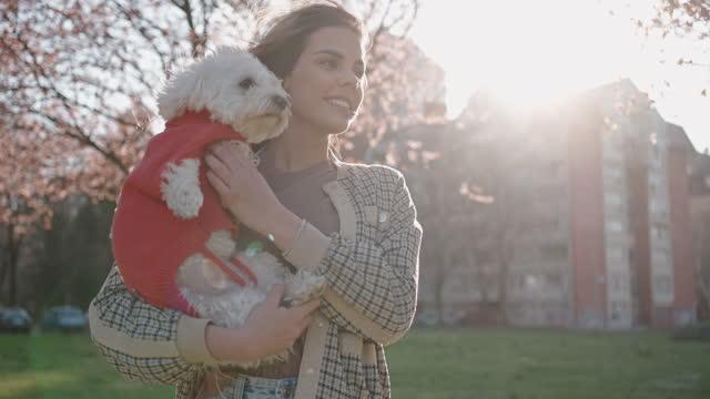 känna lugnet och lugnet under avkopplande vårdag - knähund bildbanksvideor och videomaterial från bakom kulisserna