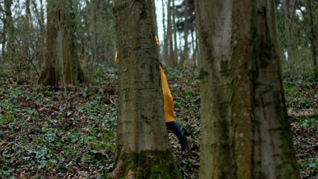 森のエネルギーを感じる - 下を向く点の映像素材/bロール