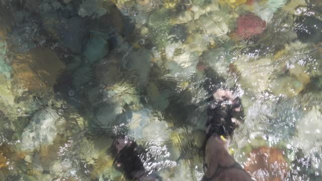 Feet walking in clear river water