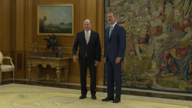 felipe vi of spain receives prince alberto ii of monaco at the zarzuela palace in madrid - palace stock videos & royalty-free footage