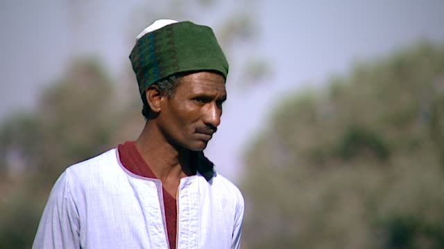 fellaheen broll view of a man with a green turban in a field near the ruins of the ramesseum - handsome people stock videos & royalty-free footage
