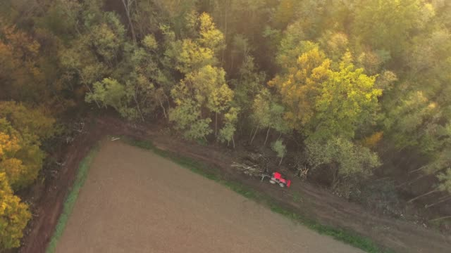 ws felling and loading of trees at edge of woods along rural field,slovenia - cutting stock videos & royalty-free footage