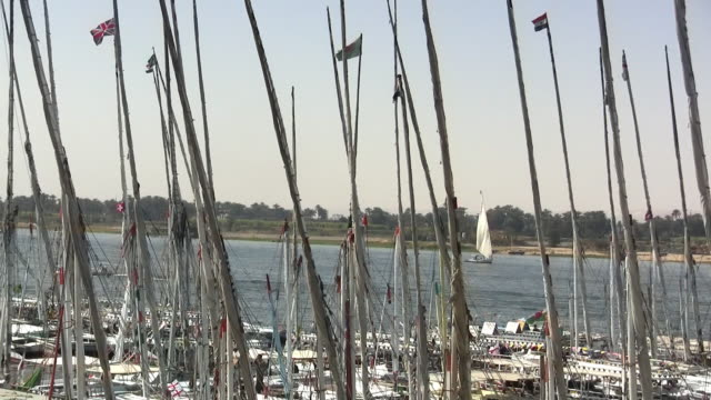 cu, zo, ms, felucca boats moored on nile river, luxor, egypt - luxor thebes stock videos & royalty-free footage