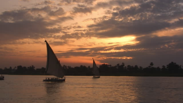 ws, feluccas boats on nile river at sunset, cairo, egypt - north africa stock videos & royalty-free footage