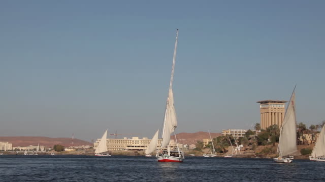 Feluccas On River Nile
