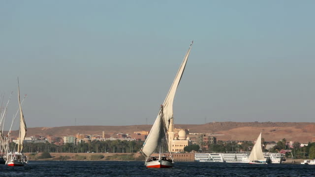 Feluccas Sailing On River Nile