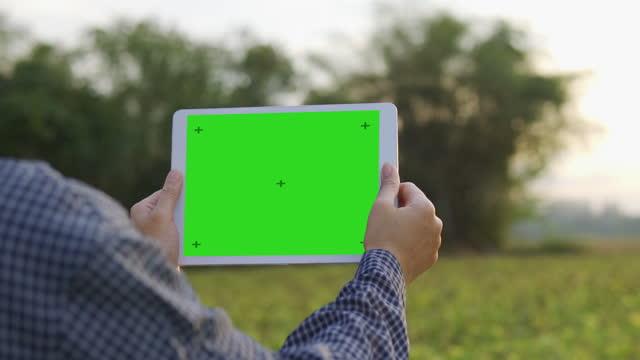 女性の農学者は、グリーンスクリーンとデジタルタブレット上で動作するタブレットを使用しています - 農学者点の映像素材/bロール