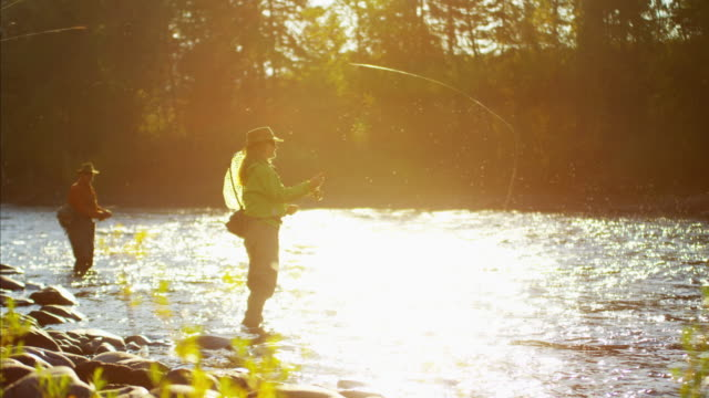 female and male casting line freshwater fishing usa - fly fishing stock videos and b-roll footage