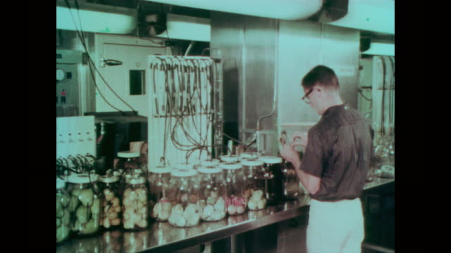 1967 Female and male scientists and technicians pasteurizing, test, irradiating and measuring different fruit and vegetables