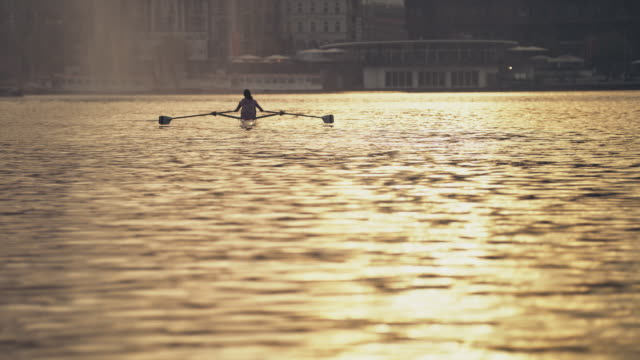 female athlete rowing boat in river at sunset - sculling stock videos & royalty-free footage