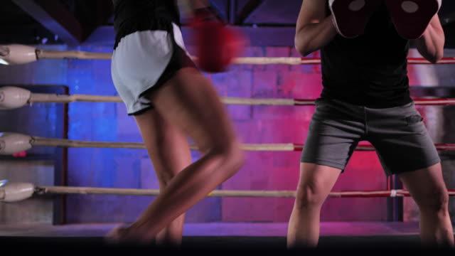 vídeos de stock e filmes b-roll de female athletes training in the gym, boxers asian women with tattoos of red hair. - etapa desportiva