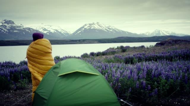 weibliche backpacker ruht auf einer wiese mit blühenden lupinen. camping - zelt stock-videos und b-roll-filmmaterial