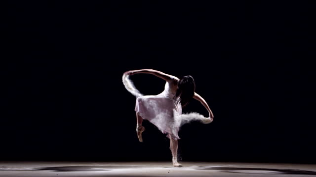 vídeos de stock, filmes e b-roll de female ballet dancer - bailarina