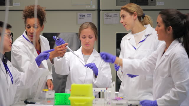 female biologists working on an experiment in the laboratory - university student stock videos and b-roll footage