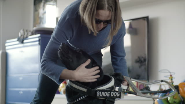 female blind pet owner wearing pet leash to dog at home - inside of stock videos & royalty-free footage