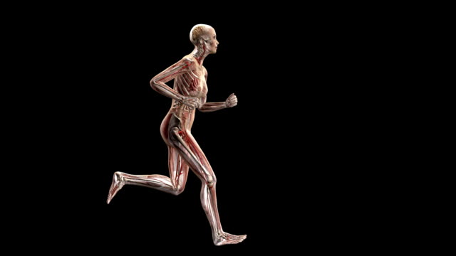 Female body running