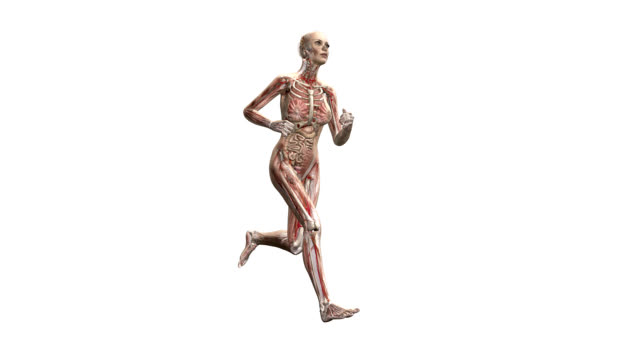 Female body running