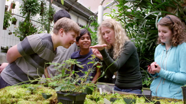 ms female botanist showing worms to group of laughing young students in research greenhouse. - botanist stock videos & royalty-free footage