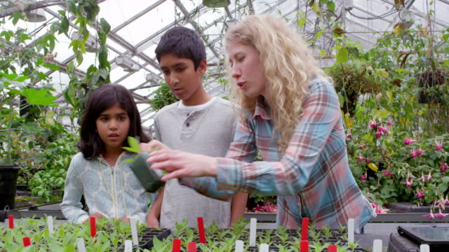 MS female botanist showing young students plants in research greenhouse.
