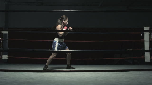 female boxer in boxing ring - pacific islander portrait stock videos & royalty-free footage