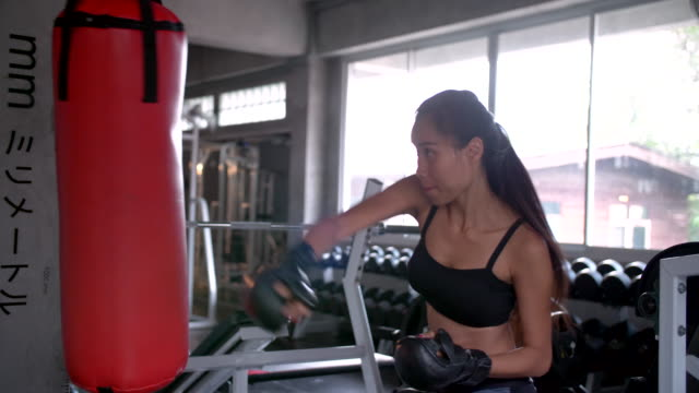female boxer training - glove fist stock videos & royalty-free footage