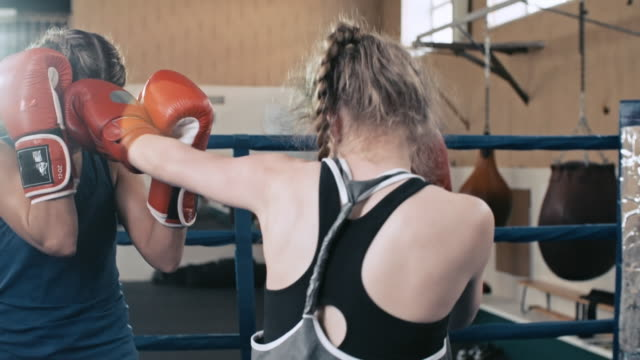 female boxers pushing punches in the ring - boxing women's stock videos & royalty-free footage