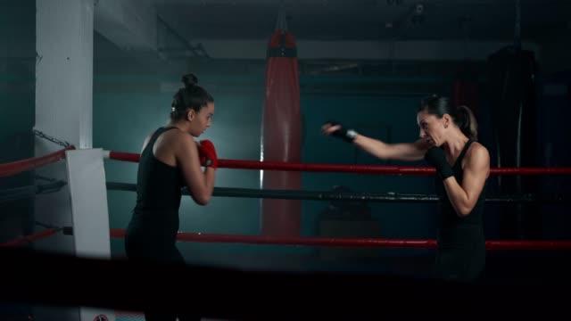 vídeos de stock, filmes e b-roll de pugilistas femininos sombra boxe - posição de combate