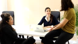 Female business colleagues discussing at desk
