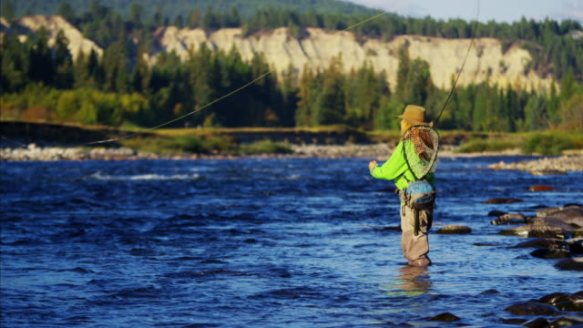 female casting line in freshwater river sunrise usa - fishing reel stock videos and b-roll footage
