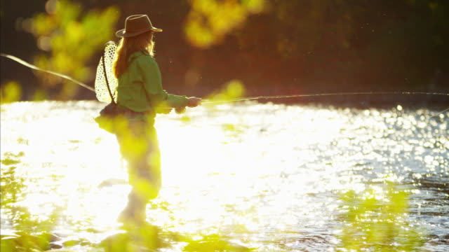vidéos et rushes de female casting line in freshwater river sunrise usa - lancer la ligne de canne à pêche